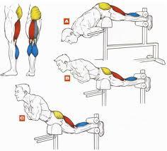 Упражнения гиперэкстензия,Гиперэкстензия, как правильно качать спину, упражнения для спины