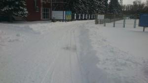 Черниговская тропа